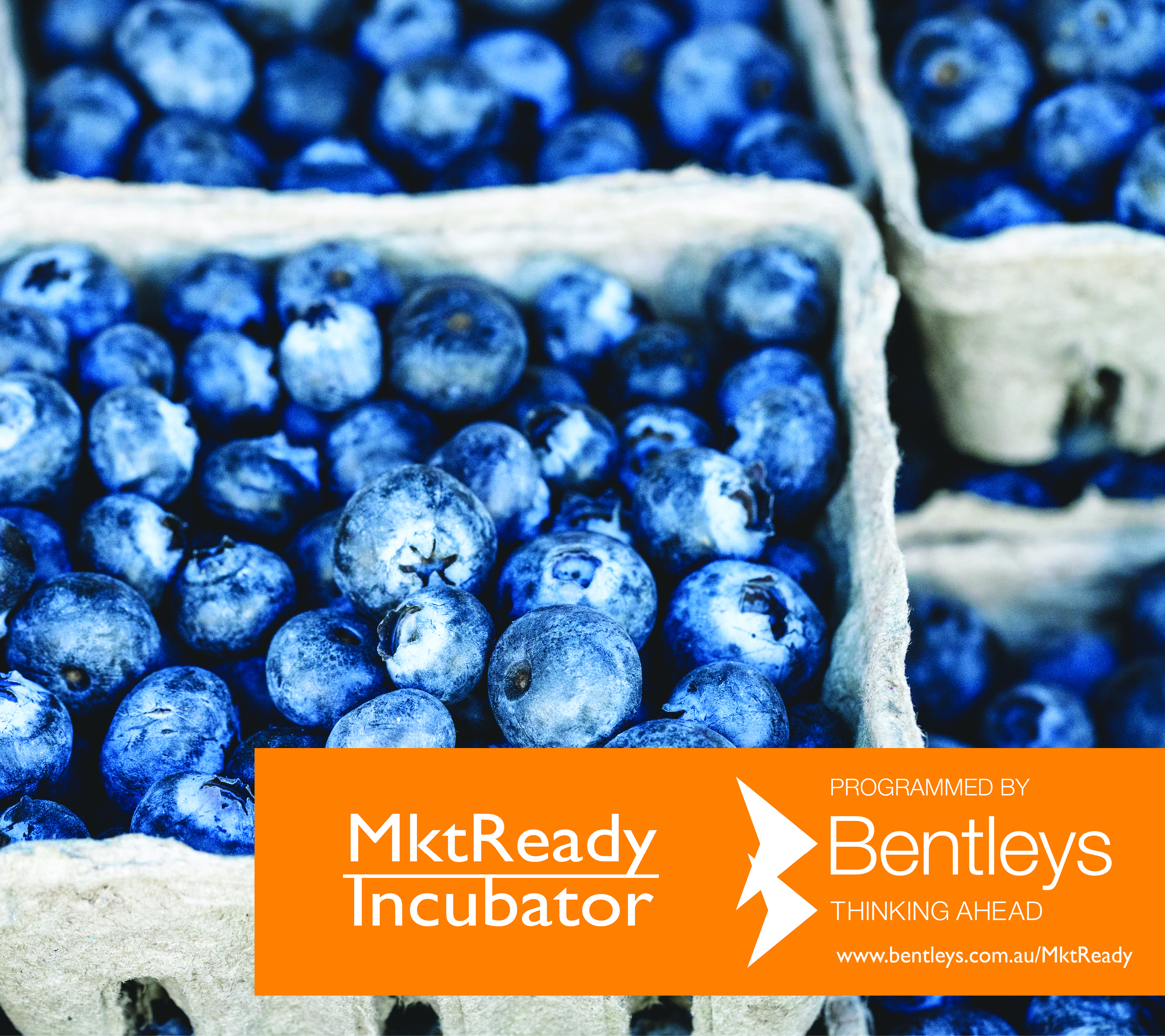 MktReady Incubator Program